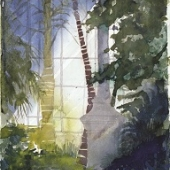 in-the-palm-house-1